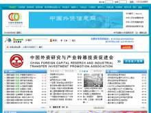 中国外资信息网